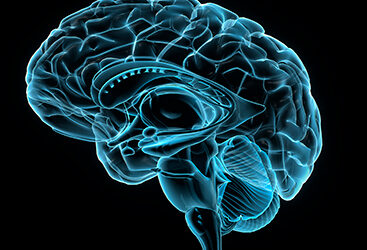 Glutamate Levels May Predict Outcomes of Patients at Risk of Psychosis